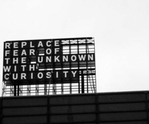 curiosity, fear, and quotes image