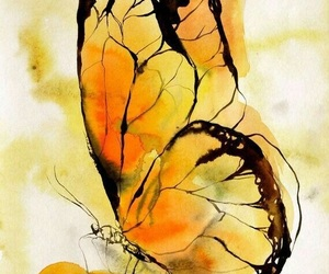 butterfly, watercolor, and art image