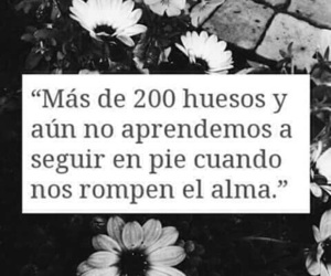 frases and heart image