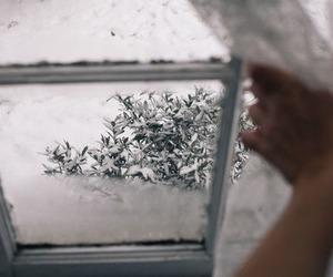 christmas, snow, and cold image