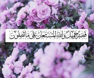 سورة يوسف and آية ١٨ image