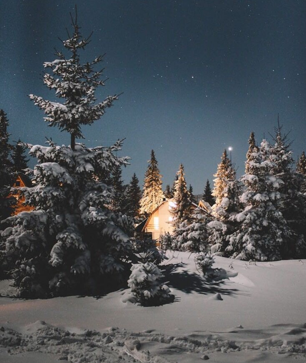 Winter Discovered By Andi On We Heart It