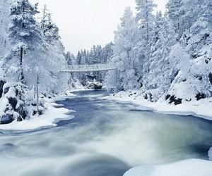 christmas, eis, and snowing image