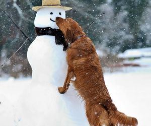 dog, snowman, and snow image