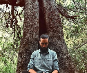 beard, tree, and jeans image