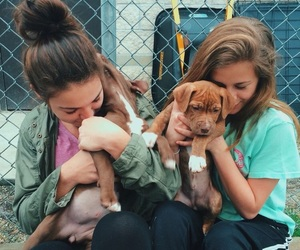 dog, girls, and cute image