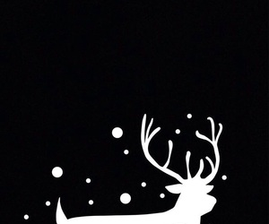 background, black and white, and christmas image