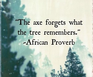 quotes, proverb, and life image