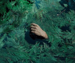 nature, green, and hand image