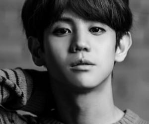 beast, black and white, and korea image