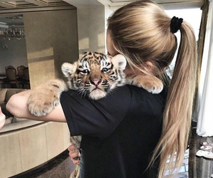 girl, tiger, and hair image