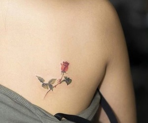 elegant, shoulder blade, and rose image