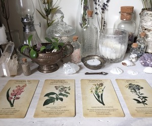 cards, herbs, and magic image