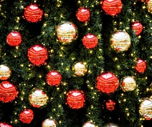 christmas tree, germany, and ornaments image