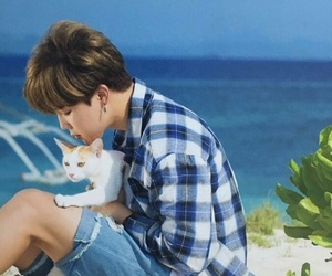 blue, kitten, and bts image