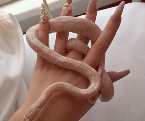 classy, snakes, and nails image