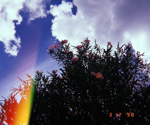 december, rainbow, and analogica image