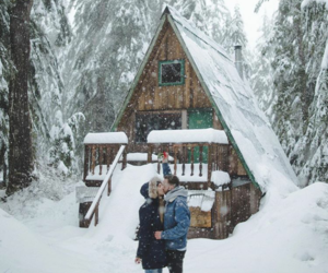 couples, forest house, and goals image
