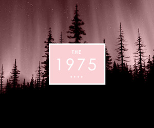 pink, music, and the 1975 image