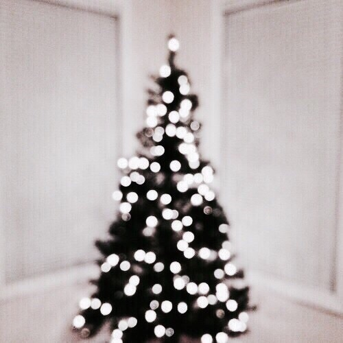 beautiful, christmas, and girls image