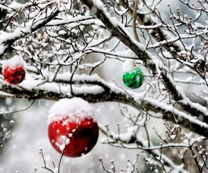 green, red, and snow image