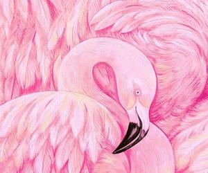 animal art, animals, and feathers image