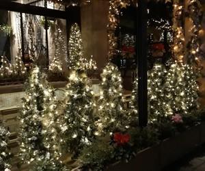 celebrate, christmas, and christmas tree image