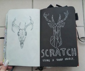 deer, scratch, and skull image