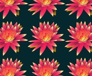 background, floral, and florals image
