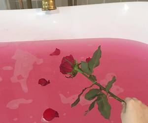 bath, pink, and water image