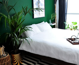 green, house, and bedroom image