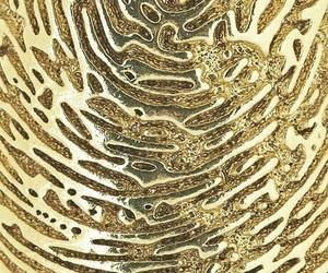 background, fingerprint, and metallic image