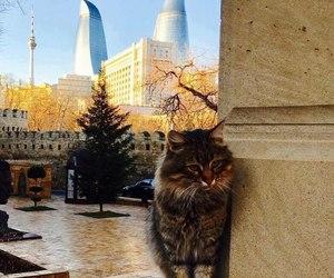 azerbaycan image