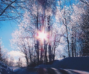 aesthetic, winter, and beautiful image