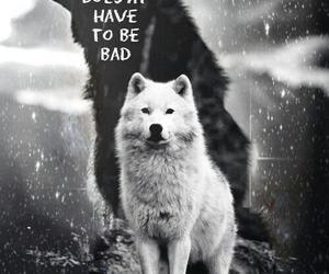 wolf, quotes, and crying image