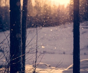 landscape, winter, and snow image