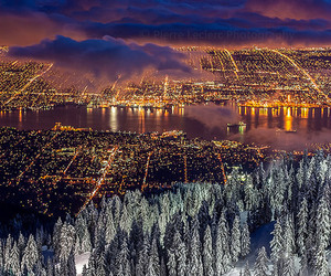 city, light, and winter image