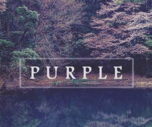 purple and wallpaper image