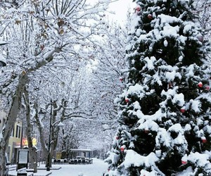christmas, season, and snow image