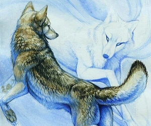 wolf, animals, and drawing image