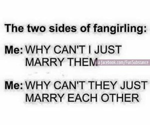 fangirl, fandom, and funny image