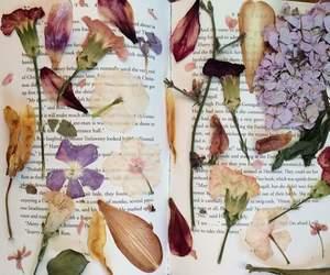 criativo, livro, and plantas image
