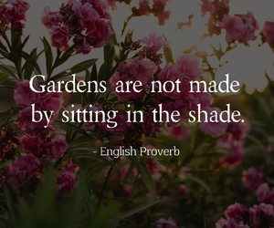 english, garden, and happiness image
