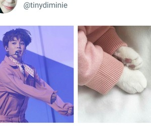 kpop, paw, and bts image