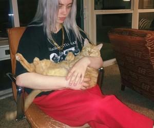 cat and billie eilish image