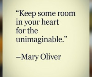inimaginable and mary oliver image