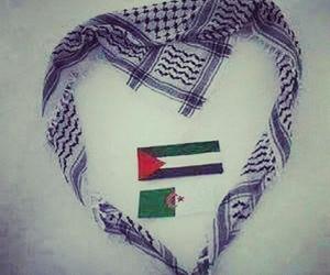 Algeria, palestine, and ❤ image