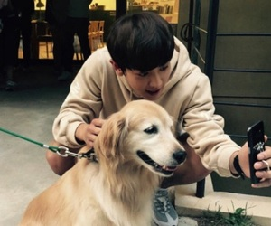 animals, exo, and lay image