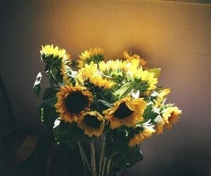 flowers, sunflower, and vintage image