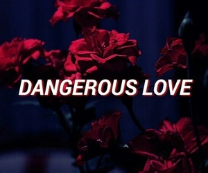 dangerous, love, and quotes image